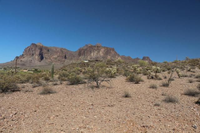 4900 E Lost Dutchman, Apache Junction, AZ 85119 (MLS #5777570) :: The Kenny Klaus Team