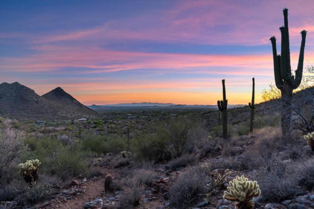 10500 E Lost Canyon Drive, Scottsdale, AZ 85255 (MLS #5777576) :: Brett Tanner Home Selling Team