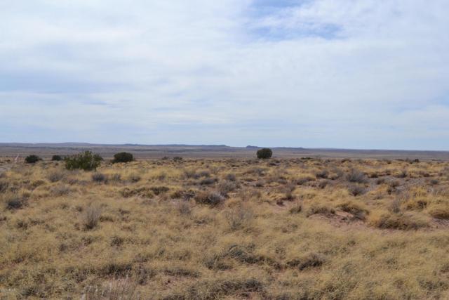 8490 Terry Trail, Snowflake, AZ 85937 (MLS #5777649) :: Yost Realty Group at RE/MAX Casa Grande