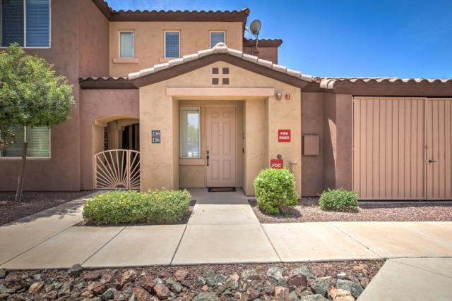 250 W Queen Creek Road #236, Chandler, AZ 85248 (MLS #5777818) :: Riddle Realty