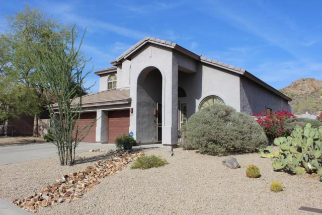4809 S Las Mananitas Trail, Gold Canyon, AZ 85118 (MLS #5777864) :: Realty Executives