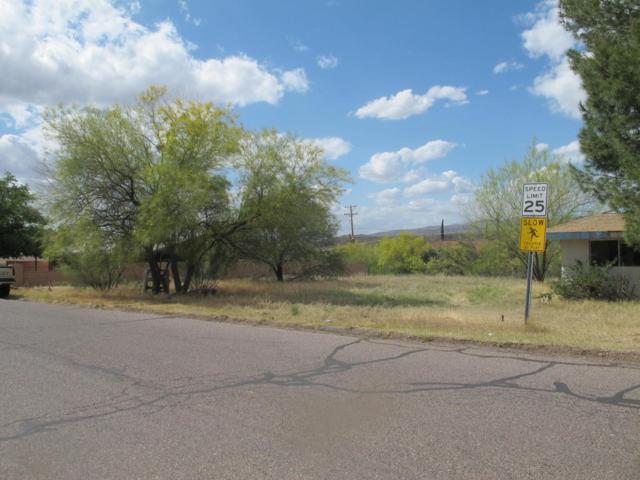 300 blk W Palo Verde Drive, Superior, AZ 85173 (MLS #5778003) :: The Daniel Montez Real Estate Group