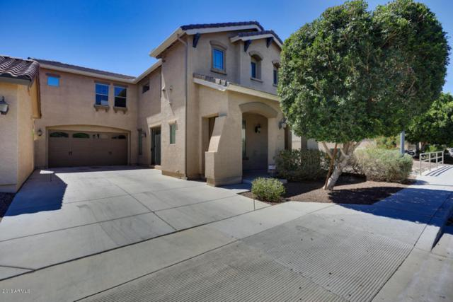 15086 N 145TH Lane, Surprise, AZ 85379 (MLS #5778037) :: Lifestyle Partners Team