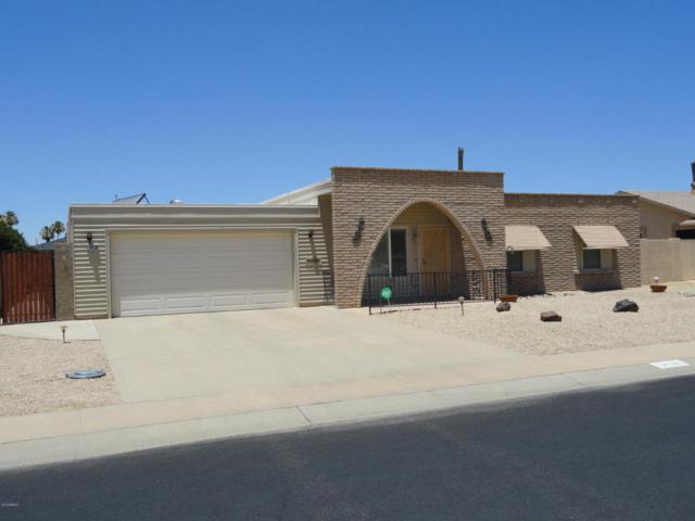 9638 W Glen Oaks Circle N, Sun City, AZ 85351 (MLS #5778127) :: Lifestyle Partners Team