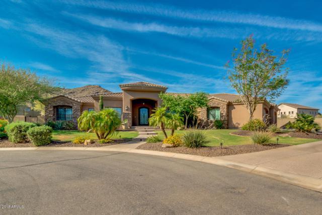3042 W Windsong Drive, Phoenix, AZ 85045 (MLS #5778138) :: Occasio Realty
