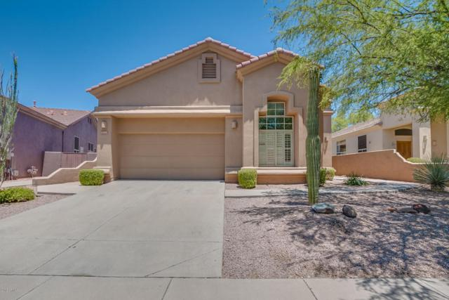 14296 E Thoroughbred Trail, Scottsdale, AZ 85259 (MLS #5778168) :: The Everest Team at My Home Group