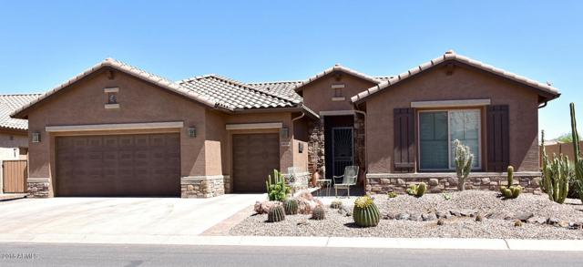 4658 W Buckskin Drive, Eloy, AZ 85131 (MLS #5778188) :: Yost Realty Group at RE/MAX Casa Grande