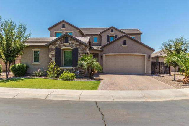10809 E Ramblewood Circle, Mesa, AZ 85212 (MLS #5778194) :: My Home Group