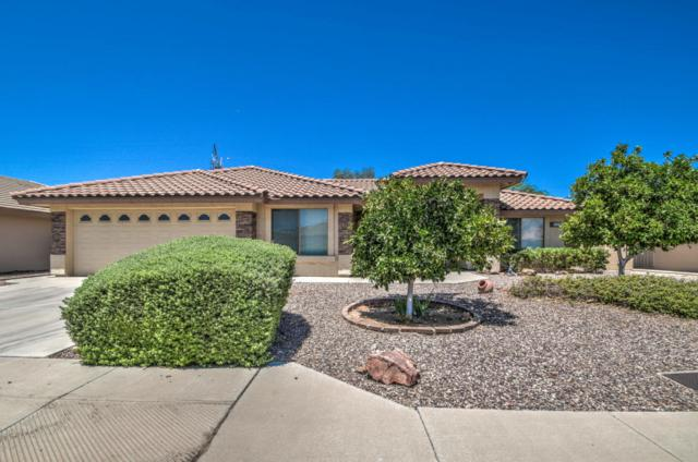 2738 S Willow Wood, Mesa, AZ 85209 (MLS #5778198) :: The Everest Team at My Home Group