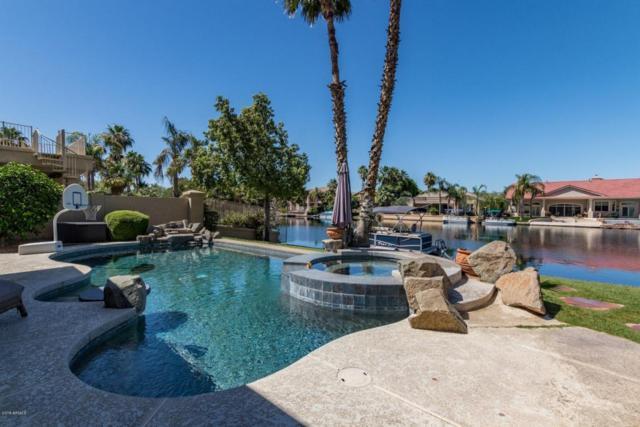 1726 E Queen Palm Drive, Gilbert, AZ 85234 (MLS #5778204) :: Kortright Group - West USA Realty