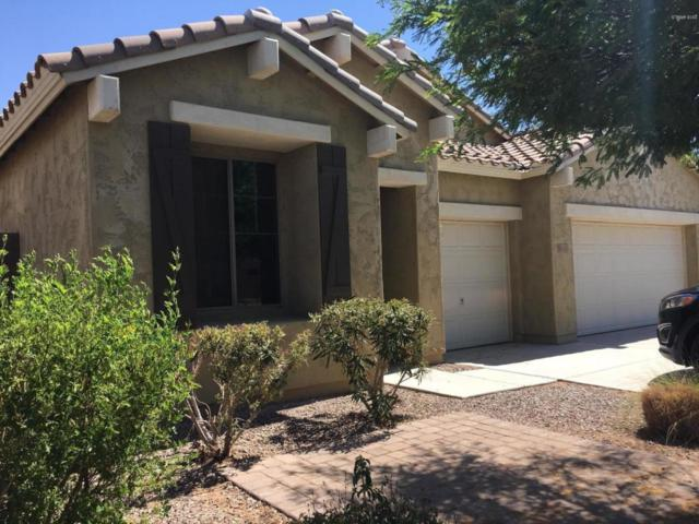 11115 E Rembrandt Avenue, Mesa, AZ 85212 (MLS #5778283) :: My Home Group