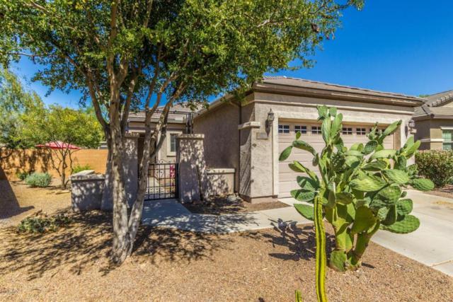 20591 N 261ST Avenue, Buckeye, AZ 85396 (MLS #5778305) :: The Everest Team at My Home Group