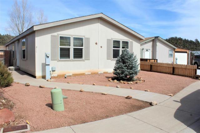 217 S Houston Creek Circle, Payson, AZ 85541 (MLS #5778367) :: Essential Properties, Inc.