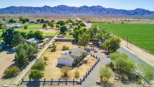 18503 W Northern Avenue, Waddell, AZ 85355 (MLS #5778379) :: Essential Properties, Inc.