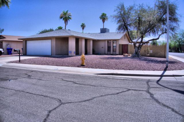 2011 N Verano Way, Chandler, AZ 85224 (MLS #5778403) :: Essential Properties, Inc.