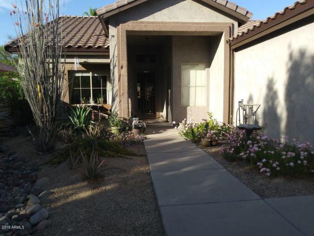 1113 W Page Avenue, Gilbert, AZ 85233 (MLS #5778408) :: Essential Properties, Inc.