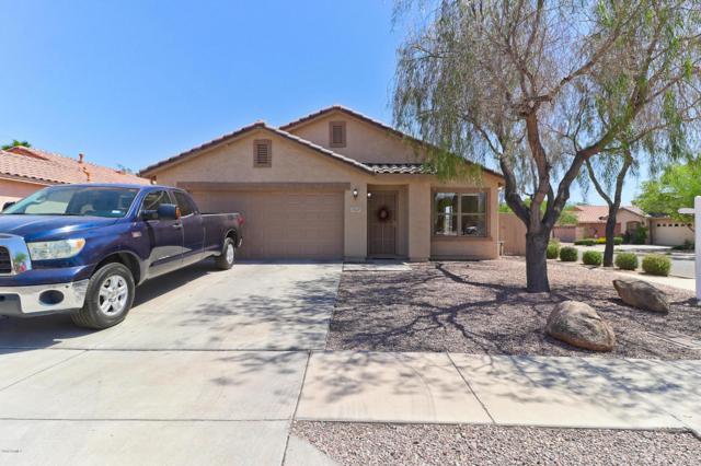 3029 W Running Deer Trail, Phoenix, AZ 85083 (MLS #5778566) :: Occasio Realty