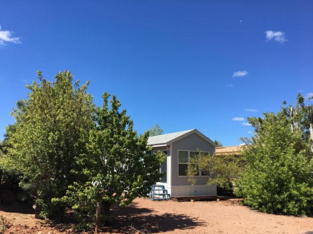 2269 Horse Thief Trail, Overgaard, AZ 85933 (MLS #5778618) :: The Daniel Montez Real Estate Group