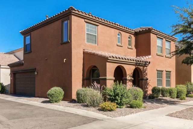 1878 S Seton Avenue, Gilbert, AZ 85295 (MLS #5778629) :: Essential Properties, Inc.
