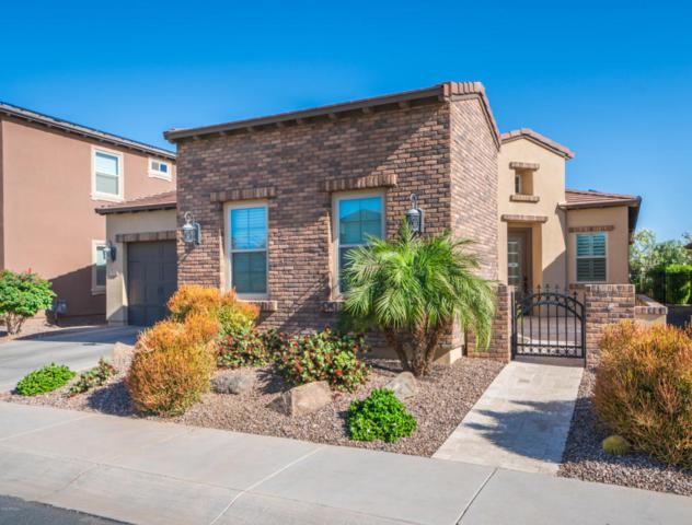 1624 E Amaranth Trail, San Tan Valley, AZ 85140 (MLS #5778724) :: Santizo Realty Group