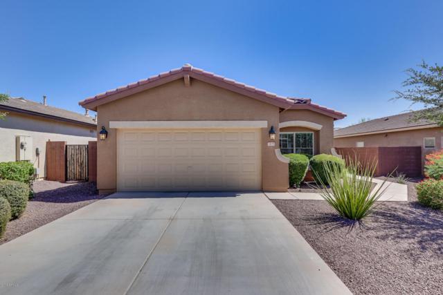 1495 W Birch Road, San Tan Valley, AZ 85140 (MLS #5778750) :: My Home Group