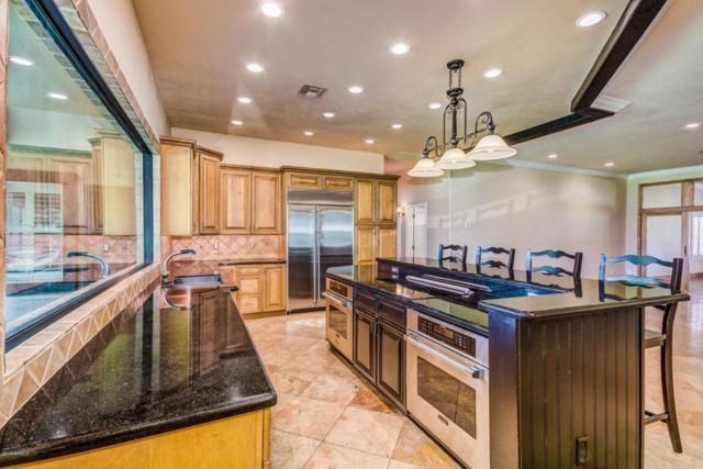 3050 S Eagle Drive, Chandler, AZ 85286 (MLS #5778753) :: Essential Properties, Inc.