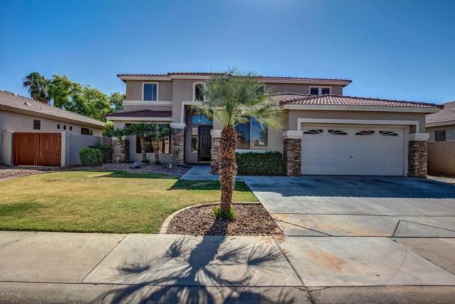 103 W Cedar Drive, Chandler, AZ 85248 (MLS #5778793) :: My Home Group