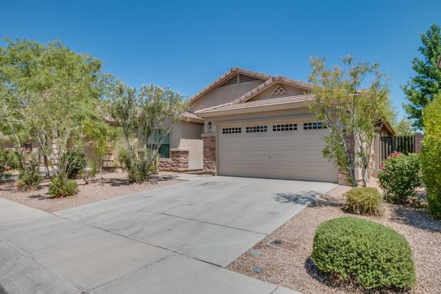 3516 E Denim Trail, San Tan Valley, AZ 85143 (MLS #5778802) :: Occasio Realty