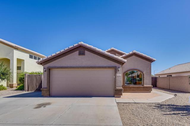 8636 W Tumblewood Drive, Peoria, AZ 85382 (MLS #5778813) :: My Home Group