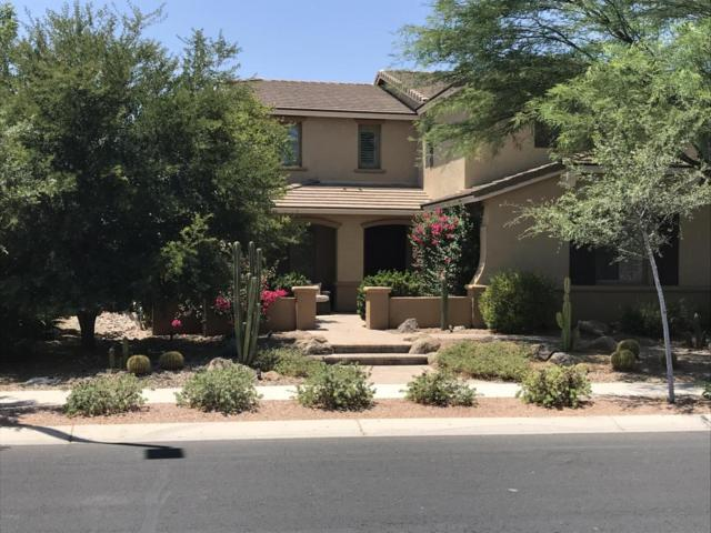 71 W Canyon Way, Chandler, AZ 85248 (MLS #5778843) :: The Wehner Group