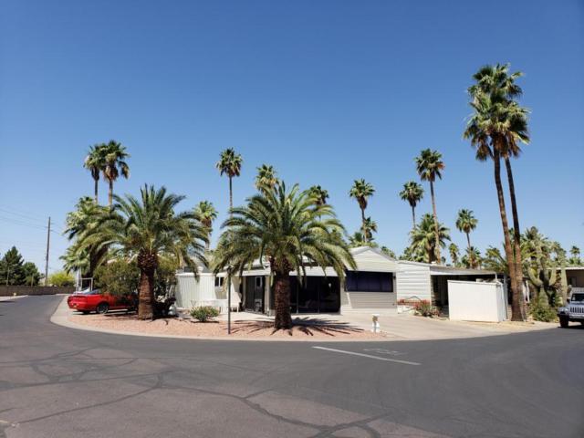 515 Aero, Mesa, AZ 85205 (MLS #5778882) :: The Daniel Montez Real Estate Group