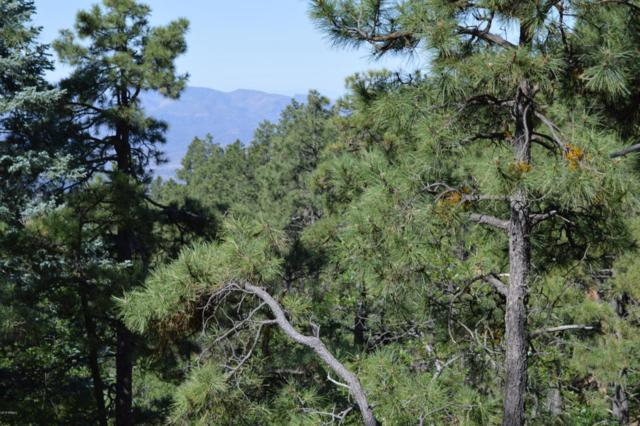 0XXX E Tall Pine Trail, Prescott, AZ 86303 (MLS #5778955) :: Riddle Realty