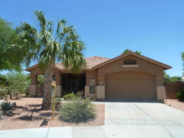 3741 E Cody Avenue, Gilbert, AZ 85234 (MLS #5778964) :: Lifestyle Partners Team