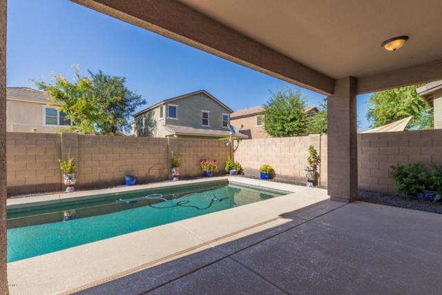 2318 E Sunland Avenue, Phoenix, AZ 85040 (MLS #5779008) :: My Home Group