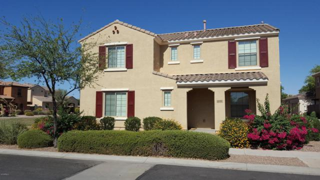 1839 S Balboa Drive, Gilbert, AZ 85295 (MLS #5779021) :: Essential Properties, Inc.