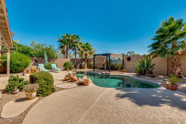 3072 N 143RD Lane, Goodyear, AZ 85395 (MLS #5779123) :: Lux Home Group at  Keller Williams Realty Phoenix