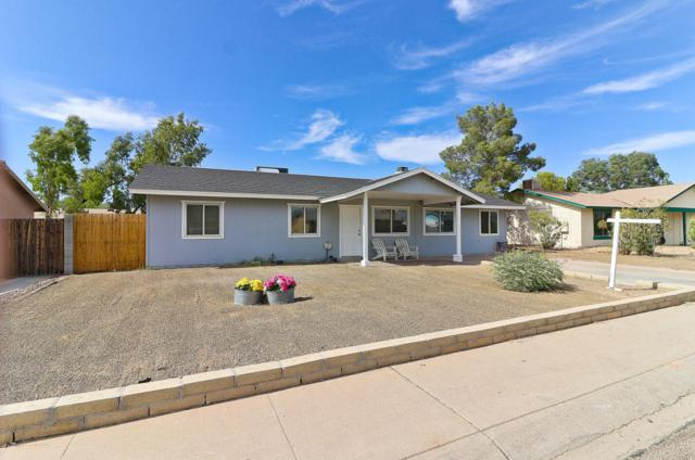 1006 W Tonopah Drive, Phoenix, AZ 85027 (MLS #5779146) :: Essential Properties, Inc.