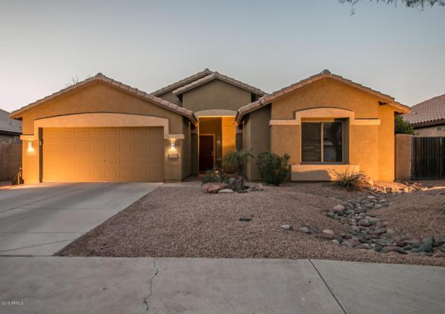 1652 E Wildhorse Place, Chandler, AZ 85286 (MLS #5779222) :: Essential Properties, Inc.