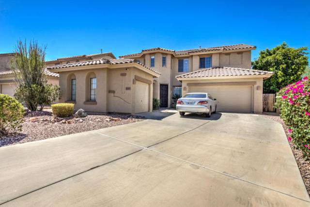 6245 W Maya Drive, Phoenix, AZ 85083 (MLS #5779251) :: My Home Group