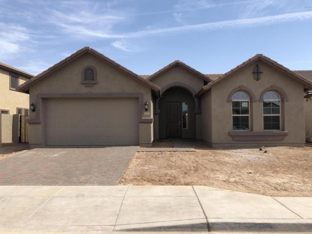 11511 E Seaver Avenue, Mesa, AZ 85212 (MLS #5779300) :: The Everest Team at My Home Group