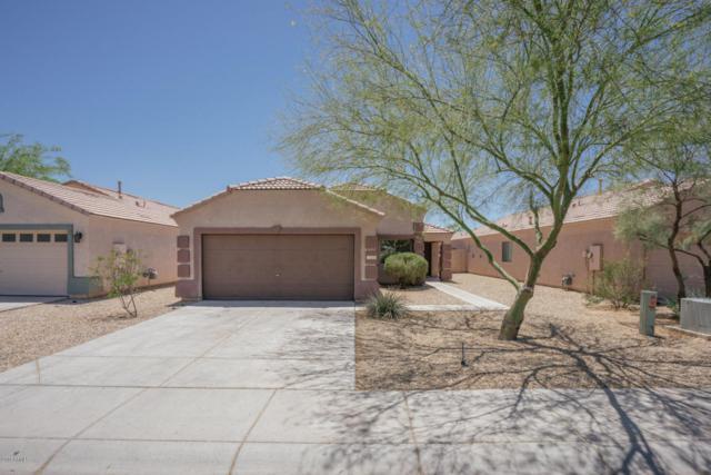 11429 W Mountain View Drive, Avondale, AZ 85323 (MLS #5779370) :: My Home Group