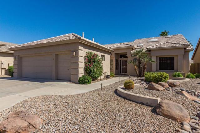 9839 E Sunburst Drive, Sun Lakes, AZ 85248 (MLS #5779397) :: Gilbert Arizona Realty