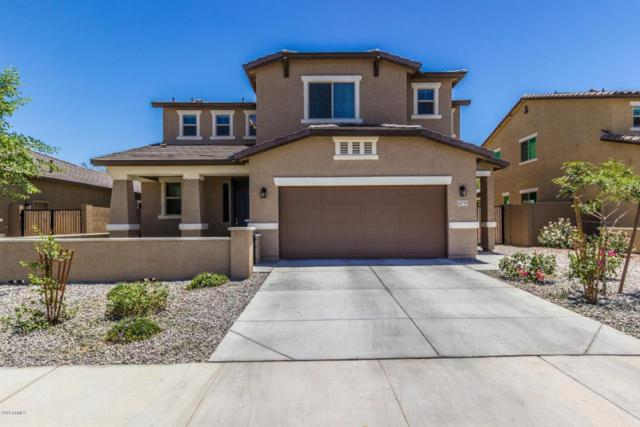 15719 W Pierce Street, Goodyear, AZ 85338 (MLS #5779406) :: My Home Group