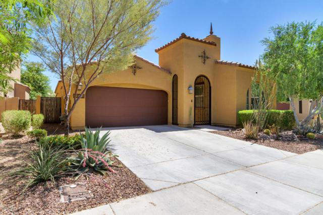 13655 W Creosote Drive, Peoria, AZ 85383 (MLS #5779426) :: My Home Group