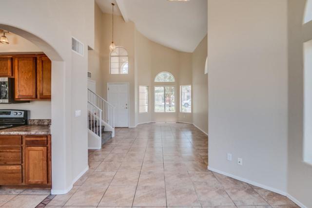 1442 E Cindy Street, Chandler, AZ 85225 (MLS #5779437) :: My Home Group