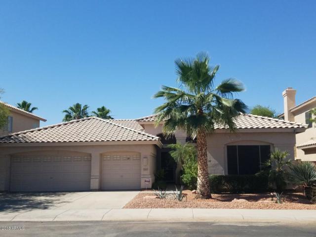 1883 E Dava Drive, Tempe, AZ 85283 (MLS #5779444) :: My Home Group