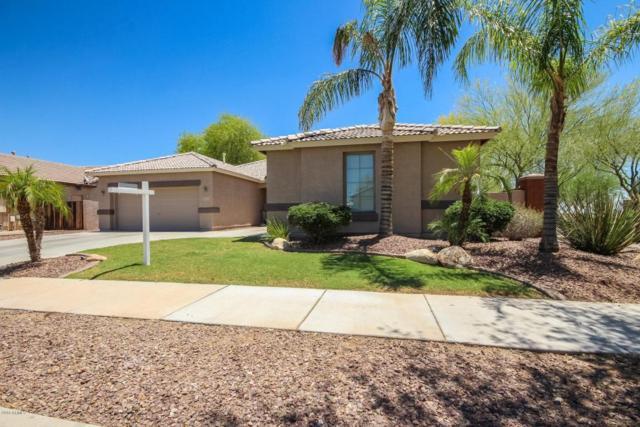 12007 N 140TH Lane, Surprise, AZ 85379 (MLS #5779504) :: My Home Group