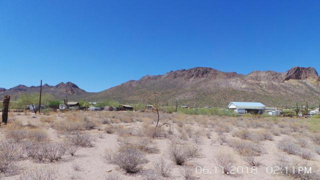 1898 W Moon Vista Street, Apache Junction, AZ 85120 (MLS #5779505) :: The Kenny Klaus Team
