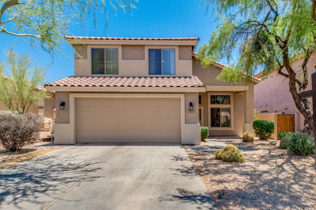 33615 N 46TH Place, Cave Creek, AZ 85331 (MLS #5779544) :: Arizona Best Real Estate