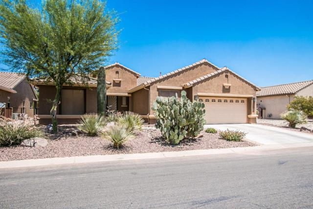 5441 N Pioneer Drive, Eloy, AZ 85131 (MLS #5779572) :: Yost Realty Group at RE/MAX Casa Grande